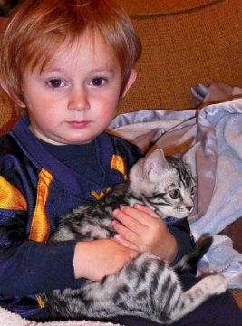 a boy and his bengal kitten
